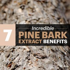 Pine bark extract - Dr. Axe #health #holistic #natural