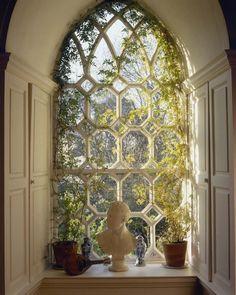 Ivy Window, Leixlip Castle, Ireland