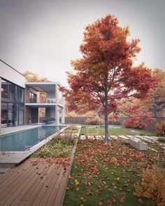 House_Pollio_23 on Behance