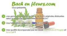Bonjour à toutes et à tous,     nous sommes heureux de vous annoncer la naissance du site www.bach-en-fleurs.com, qui saura vous apporter bien-être et sérénité.    A découvrir pour en savoir plus...    Bonne visite :-)