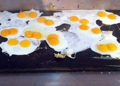 Eggs by Google images
