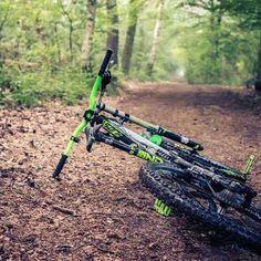 Downhillfrmtb@gmail.com  #downhill_fr_mtb #downhill #freeride #mountainbike #dh #fr #mtb #bikepark #forest #natural #mountains #troyleedesign #dakine #fox #specialized #maxxis #marzocchi #661 #redbull #dhbike #photooftheday