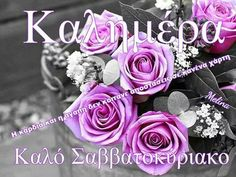 Kalimera Close Up Photography, Good Morning, Beautiful Pictures, Flowers, Gifts, Roses, Letters, Popular, Twitter