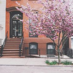 May flowers from UO New York.