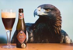 """Arend dubbel - (brouwerij De Ryck - Belgique) -  grâce à """"BelgiBeer"""" : https://belgibeer.fr/Box-Biere-Belge/refer_id=846 -  (arend = aigle en néerlandais)"""