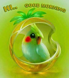 Hi...Good Morning