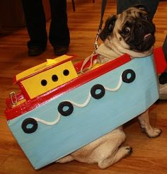 Pugboat - haha! Stop it! This is SO going to be Keefe's costume for Halloween.