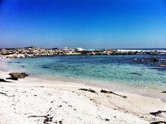 Playa Club el tebo