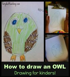 Step by step instructions for how to draw an owl from fairydustteaching.com!