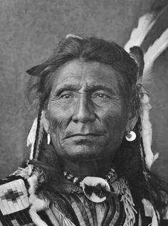 Beautiful Native American Warrior