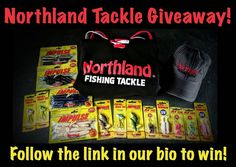 - GIVEAWAY - Follow the link in our bio to enter for your chance to win this HUGE package of lures and clothing from @northlandtackle. If you tag 3 of your fishing buddies we'll give you THREE extra entries. Fish Information, Walleye Fishing, Fishing Tips, Giveaway, Link, Clothing, Outfits, Outfit Posts, Kleding