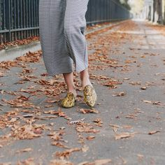 https://www.mychatelles.com/en/collection/new-arrivals/romuald-mules  Perfect Autumn day for a walk around Paris! 🍂🍁✨ #ShineInFlats #effortless #timeless #mules #cosy #trendy #comfy #style #Autumn #AutumnLeaves #ParisianStyle #ootd #LookOfTheDay