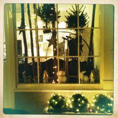 Christmas window at Bluedog & Sought