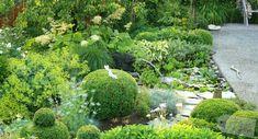 Der Gartenteich *Eine Entstehungsgeschichte* - Gartenteiche über vier Ebenen Bauanleitung
