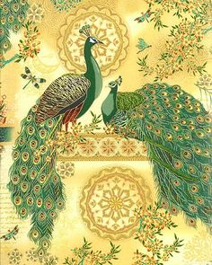 fabric - Royal Peacock Panel on Gold by Hoffman Fabrics Elegant peacock fabric designed by Punch Studio. cotton fabric for beautiful cr. Peacock Fabric, Peacock Decor, Peacock Art, Peacock Design, Gold Fabric, Illustrations, Illustration Art, Peacock Images, Peacock Photos