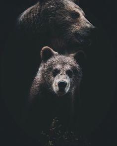 #wildernessculture: Nature and Outdoor Photography by Stian Norum Herlofsen #photography #instatravel #adventure #wildernessculture