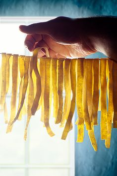 handmade pasta----love noodles from scratch. This is how my Grandma made noodles. She would have them hanging everywhere to dry. Delicious!!