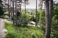 #landcape #architecture #garden #path #forest #stairs #summer-house