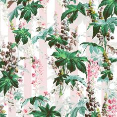 House of Hackney - CASTANEA Wallpaper Ice Pink Stripe