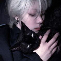 Ulzzang Girl, Cats, Animals, Gatos, Animales, Animaux, Animal, Cat, Animais