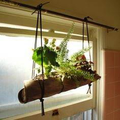 Palm Frond DIY Plant Hanger by Idea Realized