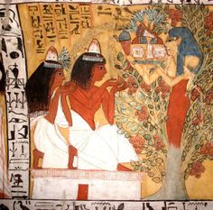 Christmas trees: between the sacred and the profane. A representation of the tree of life from the ancient Egypt.