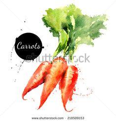 Hand Drawn Carrots Fotos, imágenes y retratos en stock | Shutterstock