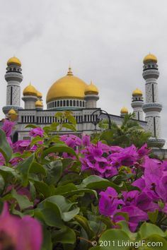Jame' Asr Hassanil Bolkiah Mosque as seen from a distance highlighting the landscaped gardens that surround the mosque - Brunei