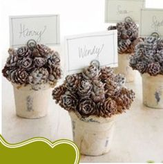 another idea for small pine cone place holders