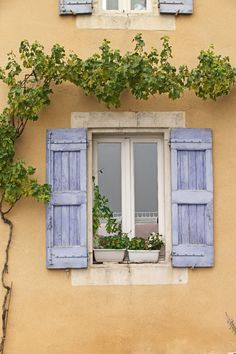 Provence & the Côte d'Azur image gallery - Lonely Planet