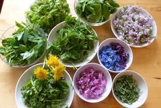 Plantes sauvages - salade printanière Cabbage, Vegetables, Food, Apple Vinegar, Dandelion, Nutritional Yeast, Essen, Cabbages, Vegetable Recipes