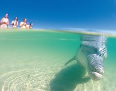 Best of the Coral Coast - Tourism Western Australia