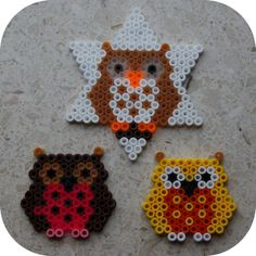 Owl on a star