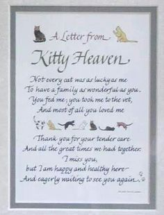 A Letter from Kitty Heaven Pet Memorial Photo Frame Cat Loss Poems, Pet Poems, Pet Loss Quotes, Cat Quotes, Animal Quotes, True Quotes, Souvenir Animal, Crazy Cat Lady, Crazy Cats