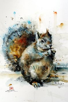 Items similar to SQUIRREL Watercolor Print, Squirrel Painting, Animal Art by Dean Crouser on Etsy Watercolor Paintings Nature, Wildlife Paintings, Watercolor Bird, Watercolor Animals, Animal Paintings, Watercolors, Watercolor Pictures, Watercolor Walls, Animal Drawings