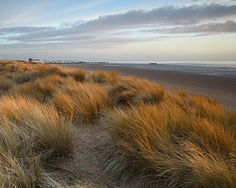 My favorite place to walk - Sand dunes at Lytham St Annes