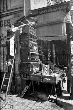 Marchand de volailles dans la cité Bénard. Paris, XIème arrondissement, vers 1900.