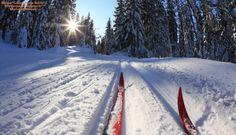 Открытие новой лыжной трассы планируется 24 декабря, в предпоследнее воскресенье этого года. Трасса, протяжённостью 10 км (от турбазы «Локомотив» до турбазы «Островок»), располагается недалеко от озера Сазанка в Энгельсе. Работы начались ещё в сентябре. Лыжная трасса проложена, вдоль неё установлено освещение. Осталось оборудовать места для проката лыж и коньков, а также автостоянку и зону отдыха. «Мы планируем проводить лыжные соревнования. Думаю, что это станет хорошей традицией. Для этого…