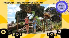 Reviews for Kids   Visiting Pandora: The World of Avatar at Disney's Ani...
