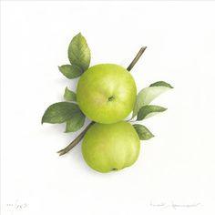 White Calville apples