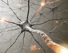 #Scientists find new treatment option for rare autoimmune disease - News-Medical.net: UPI.com Scientists find new treatment option for rare…