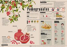 Graphic Design Posters, Graphic Design Inspiration, Scientific Poster Design, Research Poster, Booklet Design, Poster Layout, Information Design, Presentation Design, Editorial Design