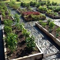 How to Figure Soil Volume for Raised Beds | Thom's Gardening Corner