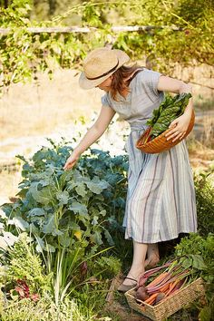 Farm Lifestyle, Gardening Photography, Female Farmer, Cottage In The Woods, Country Life, Country Living, Organic Gardening, Outdoor Gardens, Photoshoot