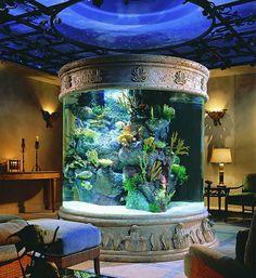 Unique aquarium.