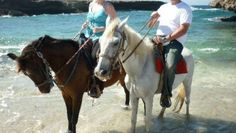 The Gold Mine Ranch in Aruba      #aioutlet