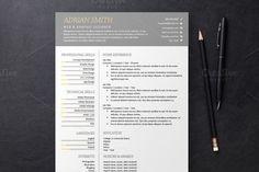 Nice Gray Resume 3 Templates  CreativeWork247 - Fonts, Graphics, Themes, Te...