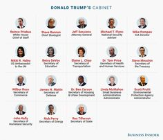 MEET THE NEW EXECUTIVE BRANCH: Here's who Trump has appointed to senior leadership positions
