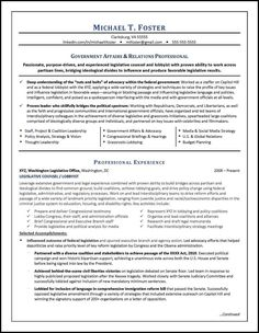 Example Of Cv Interesting National Awardwinning Executive Resume Examples Executive Cover .
