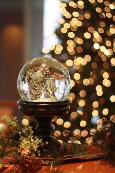 ~ Beautiful snow globe ~
